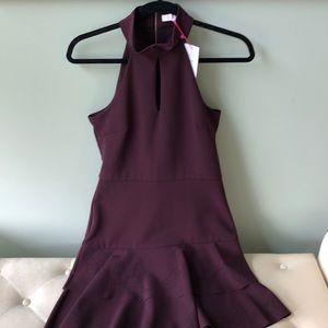 NWT Parker dress